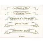 Customized Corporate Award Holders / Award Certificates