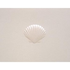 Scallop Shell, Pearl Embossed